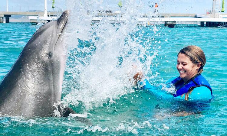 Dolphin Splash and Swim