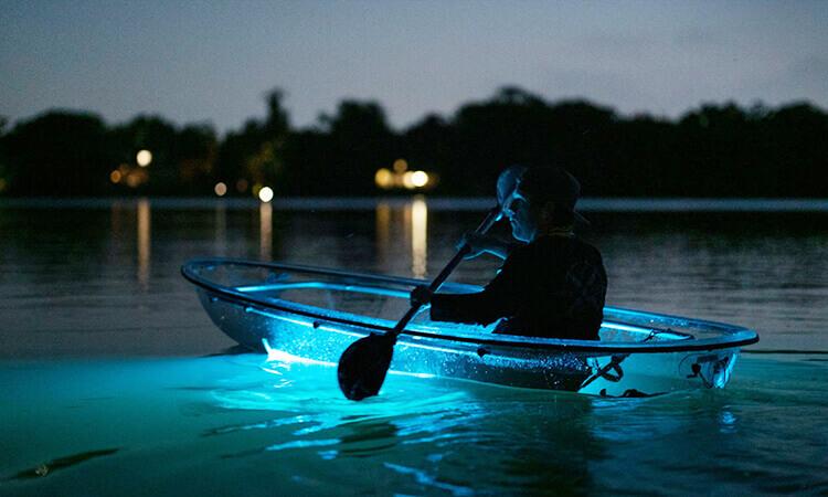 Illuminated Night Kayaking