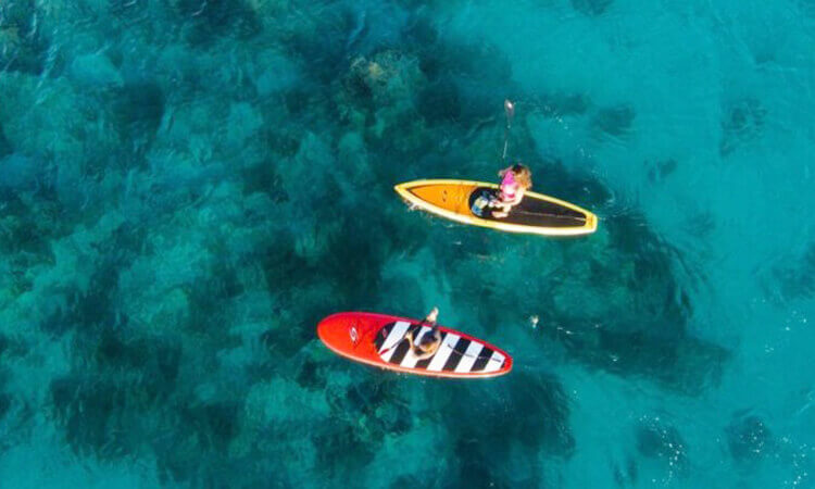 East End Paddleboard Excursion