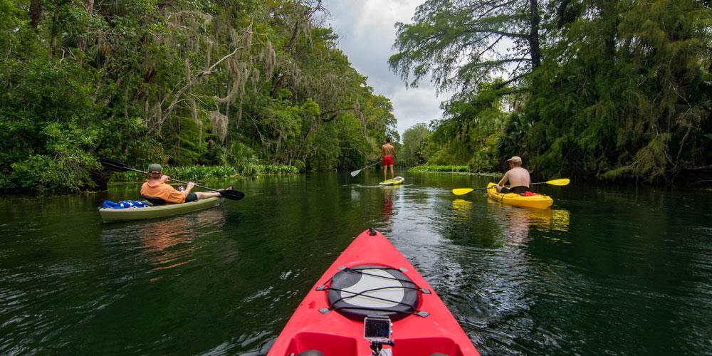 Best Tours & Activities - Orlando Florida