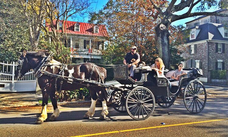 Vis a Vis Carriage Ride
